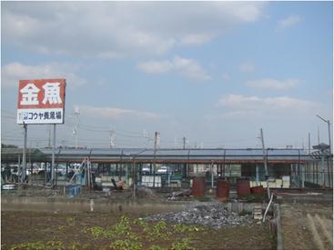 奈良県大和郡山市コウヤ養魚場